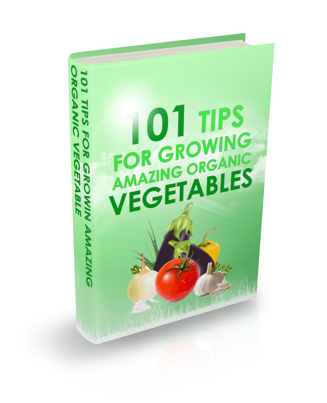 101 Tips for Growing Amazing Organic Vegetables