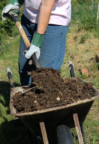 Amend Garden Soil with Plenty of Compost