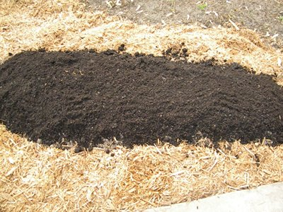Amend the Soil Well With Compost