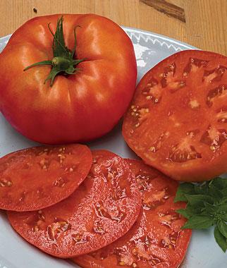 Beefsteak Heirloom Tomato