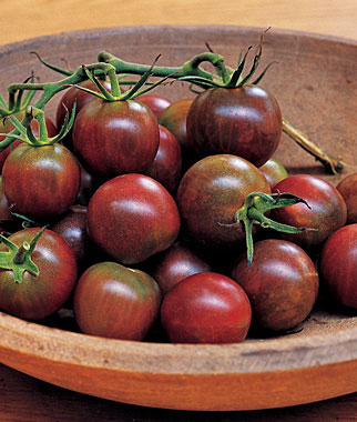 Black Pearl Cherry Tomato