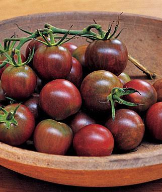 Black Pearl Cherry Tomato