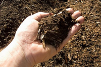 compost-main
