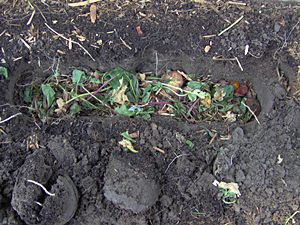 Add Composting Materials To The Trench