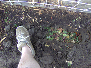Cover The Trench With Soil