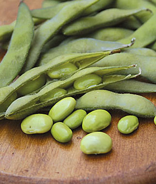 Edamame Is a Great Addition to Southwest Vegetable Gardens