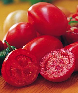 Fresh Salsa Tomato
