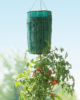 Gardeners Revolution Planter