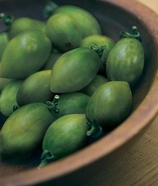 Green Envy Hybrid Tomato