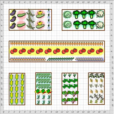 Improve Efficiency In Your Vegetable Garden | Veggie Gardener