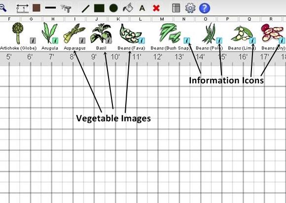 Choosing the Vegetables In Your Garden Plan