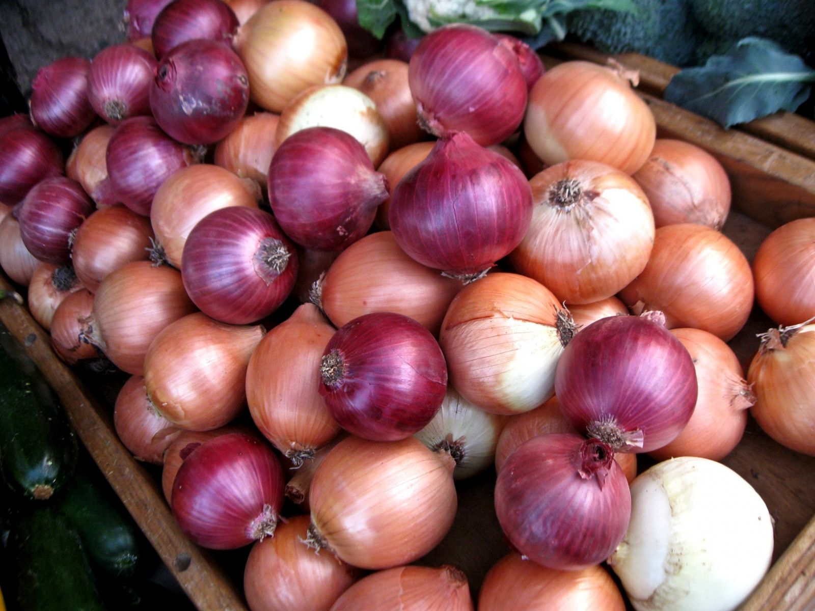 Grow Onions if You Want a Versatile Veggie | Veggie Gardener