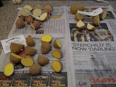 Let the Potato Seed Pieces Dry Before Planting