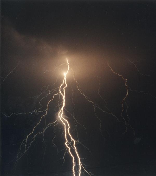 Lightning Can Benefit Plants