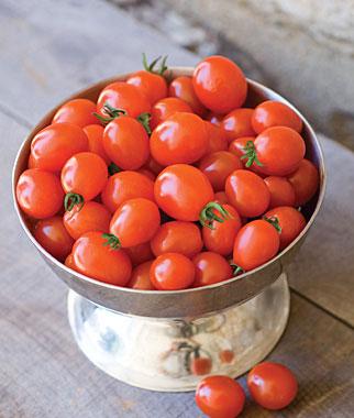 Napa Grape Tomato