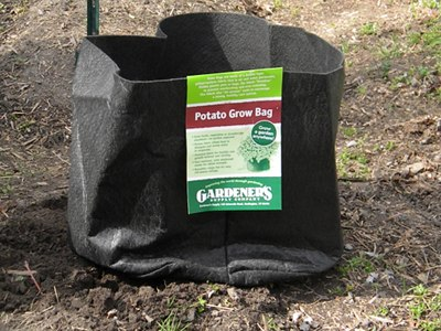 Place the Potato Grow Bag In the Desired Location