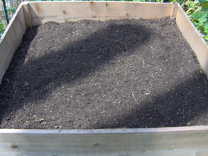 Raised Bed for Planting Turnips