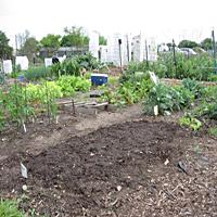Plot Garden