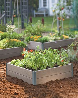 Raised Beds Work Well for Preventing Weeds