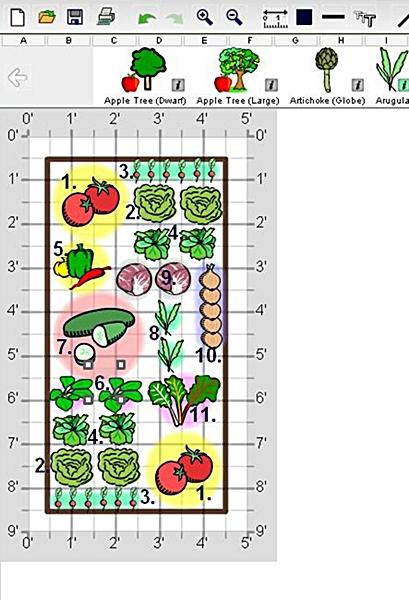 large salad garden