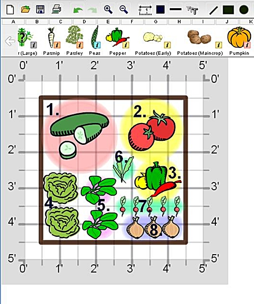 Create a fresh salad garden veggie gardener for Small garden plot layout