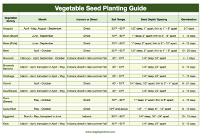 Vegetable Seed Planting Guide
