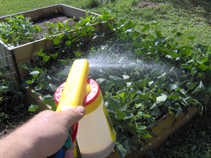 Terracycle Garden Fertilizer