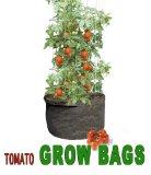 tomato grow bag