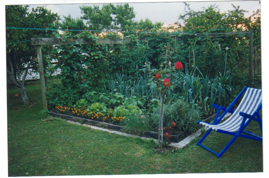 Turn Your Vegetable Garden Into Paradise