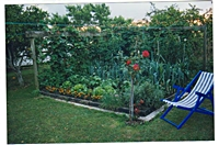 Sit Back and Enjoy Your Vegetable Garden