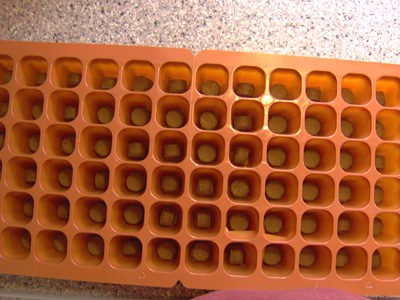 Burpee Ultimate Growing System Growing Tray with Growing Cubes