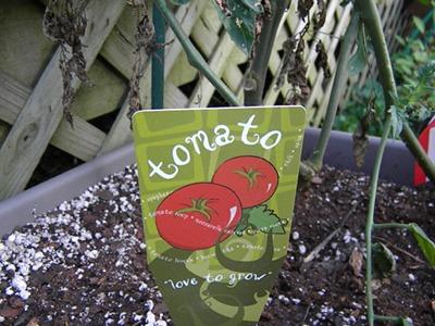 Winchester Gardens Tomato Plant Marker